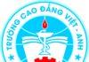 Trường Cao đẳng Việt Anh